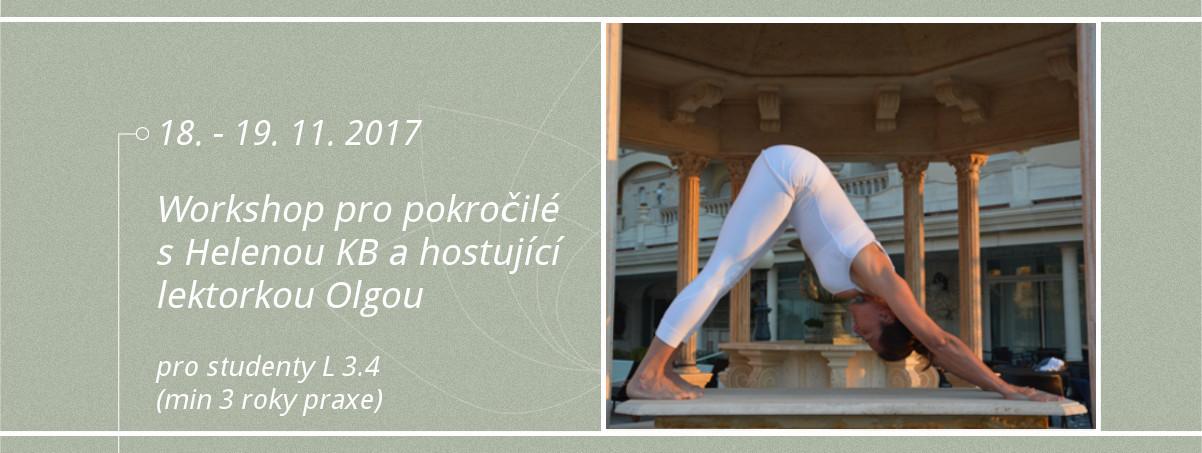Iyengar yoga worskhop pro pokrocile