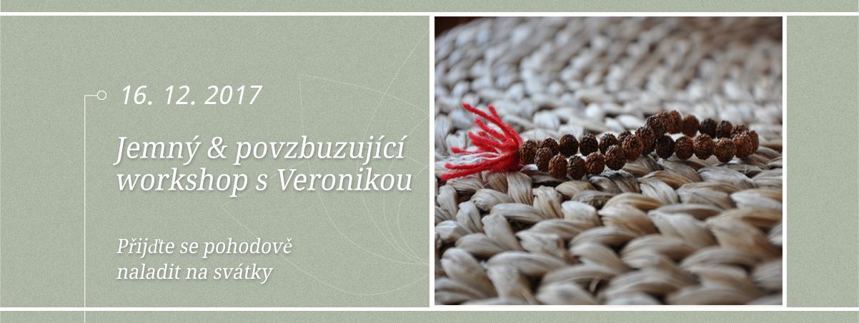 Vánoční workshop Iyengar jógy s Veronikou